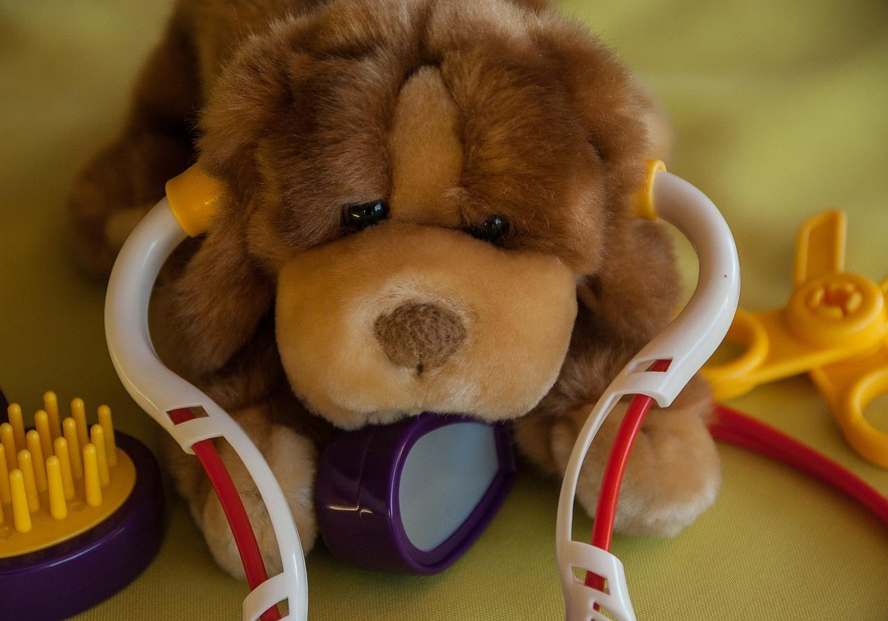 peluche de chien avec un sthétoscope