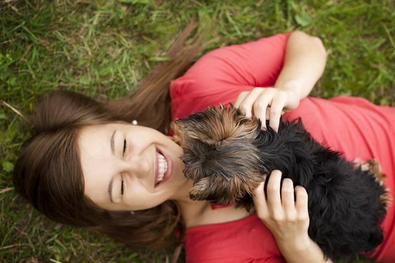 Les vers du chien : savoir s'en protéger