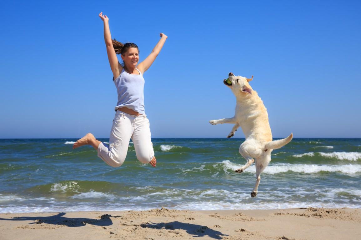Jouer avec son chien : bon pour lui… et pour vous !