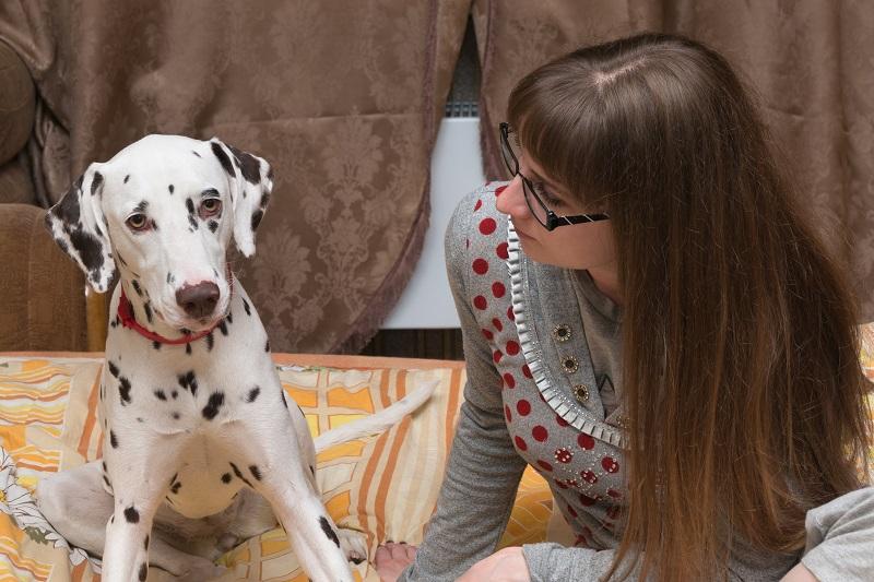 Comment repérer les symptômes d'anxiété chez le chien
