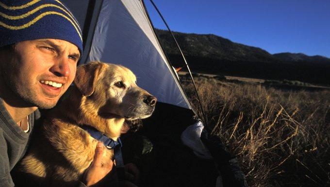 Comment faire le meilleur voyage de camping avec votre chien